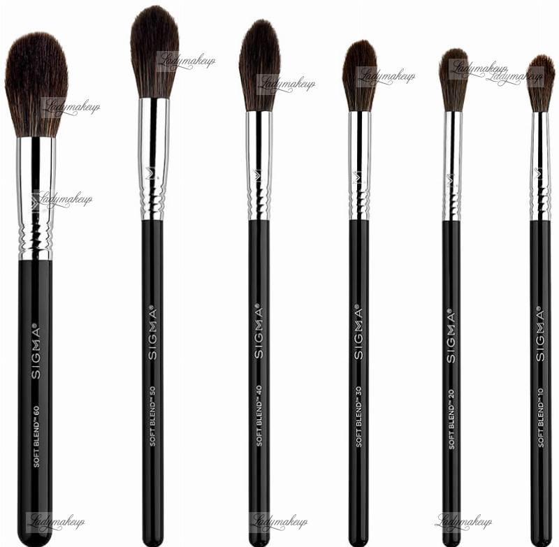 Sigma Soft Blend Brush Set 6