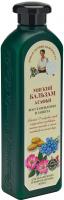 Agafia - Receptury Babuszki Agafii - Ochronno-odbudowujący balsam do włosów farbowanych i zniszczonych - 350 ml