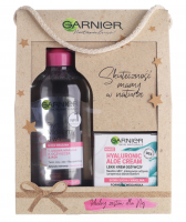 GARNIER - Gift set of face care cosmetics - Hyaluronic Aloe cream 50 ml + Micellar solution 3in1 400 ml