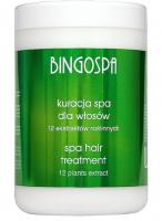 BINGOSPA - SPA treatment for weak and falling hair - 1000g