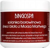 BINGOSPA - Peat Brine - Solanka borowinowa z masłem Shea i błotem z Morza Martwego - 600 g
