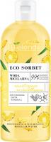 Bielenda - ECO SORBET - Moisturizing & illuminating Micellar Water - Moisturizing and illuminating micellar water - Pineapple - 500 ml