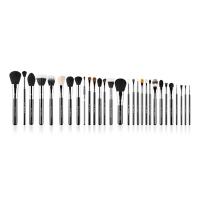 Sigma - Complete Kit - Extravaganza Chrome Kit - Professional set of 29 make-up brushes + case