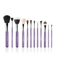 Sigma - ESSENTIAL KIT - MAKE ME CRAZY - Professional set of 12 brushes + tube (VIOLET)