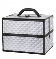 MAKE-UP BOX - PB1201 SILVER DIAMOND 3D + BLACK FRAME