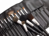 LancrOne - Set of 17 makeup brushes + black case