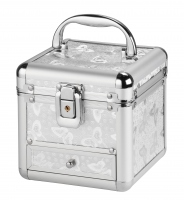 Mini srebrny kufer kosmetyczny - Silver motyl - HZ02