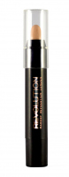 MAKEUP REVOLUTION - BROW ARCH ENHANCING STICK - Kredka/korektor do łuku brwiowego