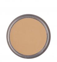 KRYOLAN - Ultra Foundation - Podkład w kremie dobrze kryjący  - ART. 9002 - FS 45 - FS 45