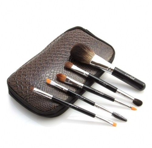 LancrOne - Set of 9 Makeup Brushes in a Case