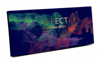 AFFECT - PRESSED EYESHADOWS PALETTE - Paleta 10 cieni prasowanych - EVENING MOOD