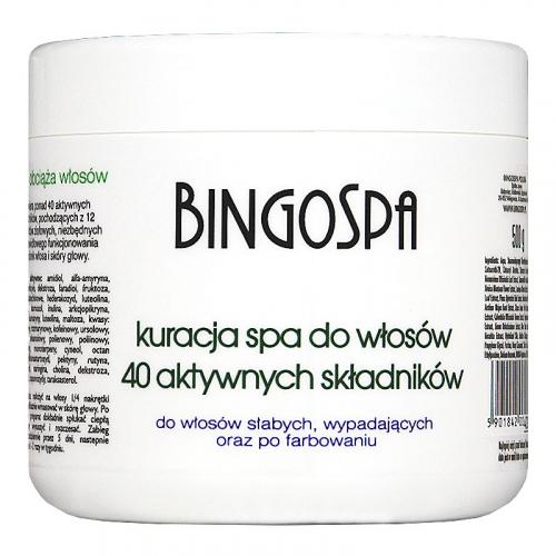 BINGOSPA - SPA treatment for weak hair - 500g
