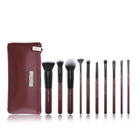 JESSUP - LUXURY SERIES KIT - Set of 10 make-up brushes + Wash bag - Plum Queen Set - T259 + CB004