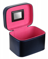 Inter-Vion - Metallic cosmetic box - 415 205 - L