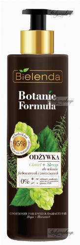 Bielenda - Botanic Formula - Conditioner Hops + Horsetail - Conditioner for dyed and damaged hair - Hops + Horsetail - 245 ml